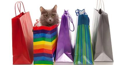 Birthday Presents Bags Cat