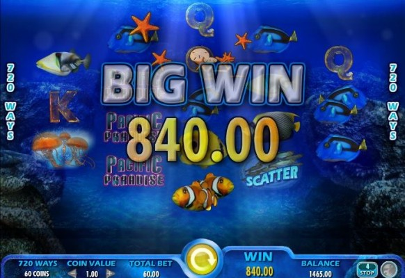 Pacific Paradise Slot by IGT – Big Win