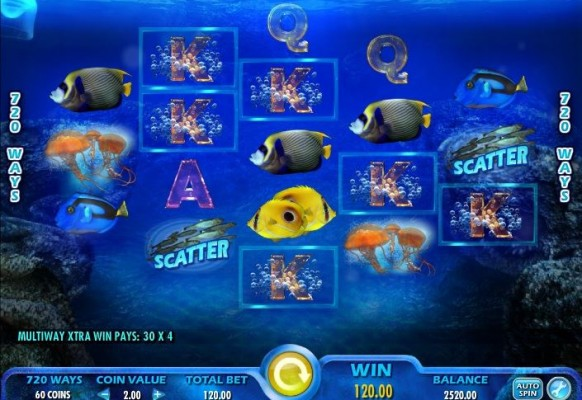 Pacific Paradise Slot by IGT – Winning Combination