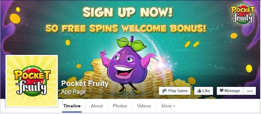 Pocket Fruity Facebook Banner