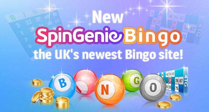 Spin Genie Bingo Banner